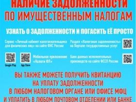 Межрайонная  инспекция федеральной налоговой службы России №29 по Республики Башкортостан рекомендует  гражданам о необходимости проверки и погашения задолженности по имущественным налогам  физических лиц